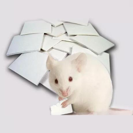大小鼠筑巢片